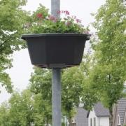 Bloembakken Ederveen in Bloei