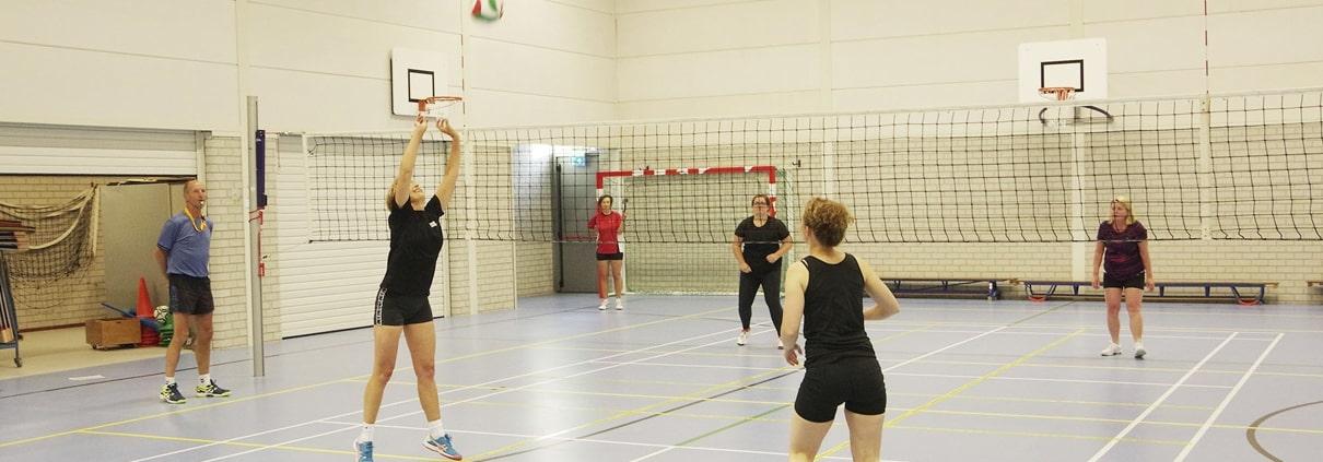 Co-Volley Cees Roelofsen DOS Lunteren
