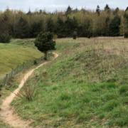 Verborgen valleitje op landgoed Kastanjehof